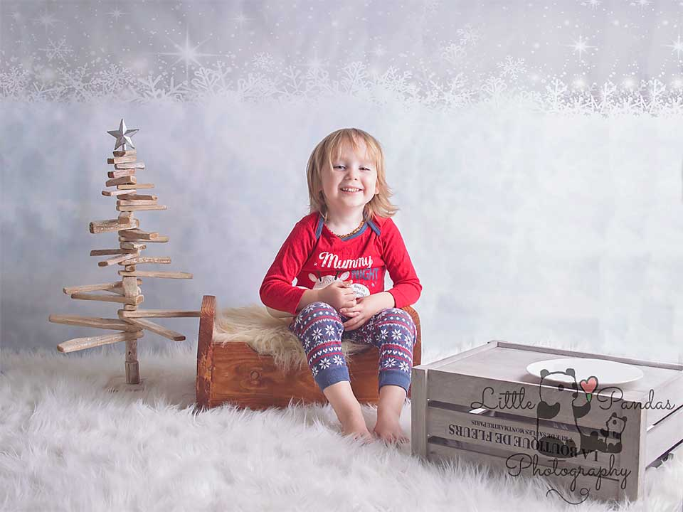 Little boy with Xmas tree