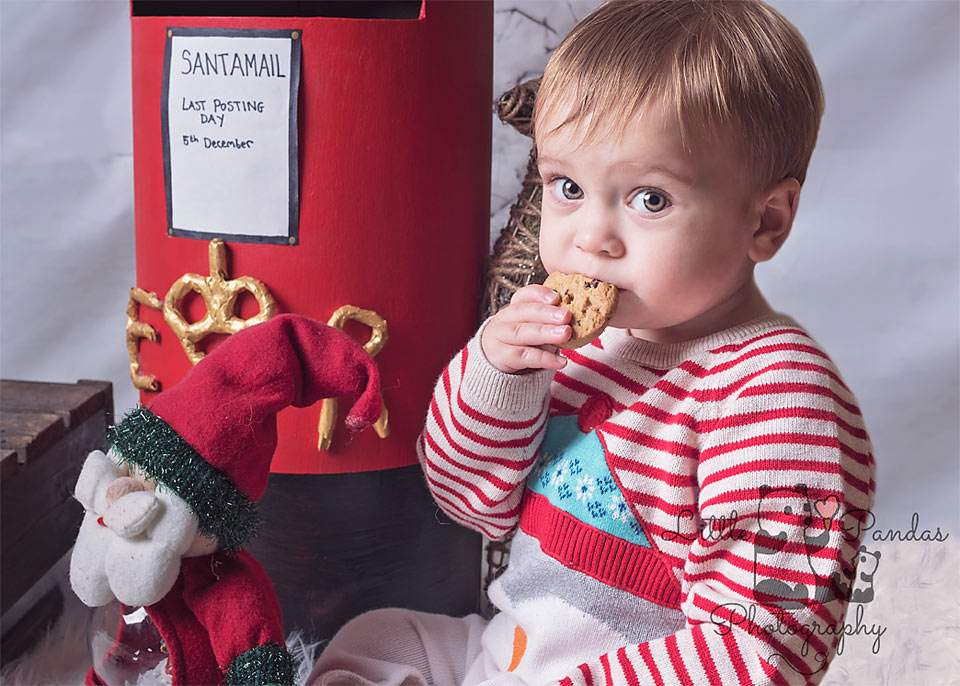 Little boy eating a cookie